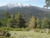 Conferencia en Abierto.  El Pinar de los Belgas,  la Construcción de un Paisaje Forestal en la Sierra de Guadarrama